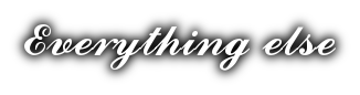 everything else logo